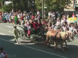 Videos aus Freiberg, Tag der Sachsen - Herz aus Silber - Terra Mineralia